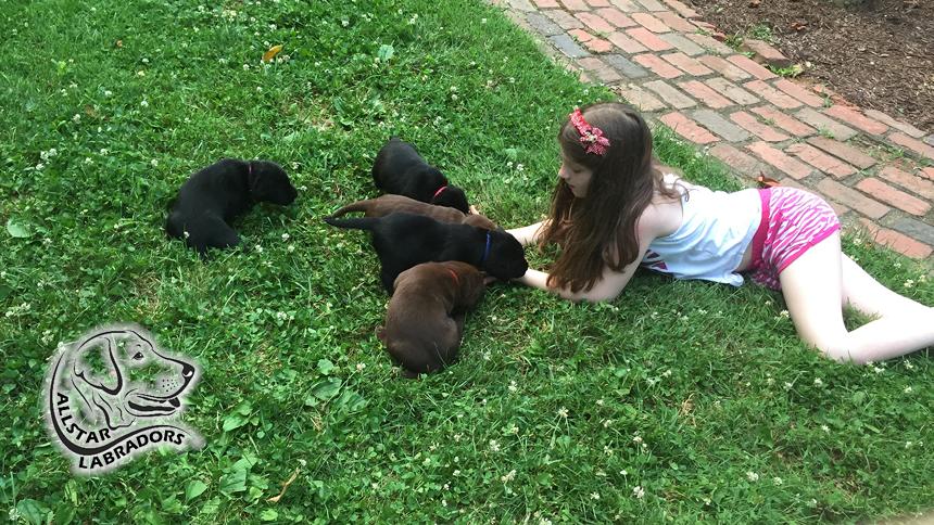 Puppy Pics 860-484-20